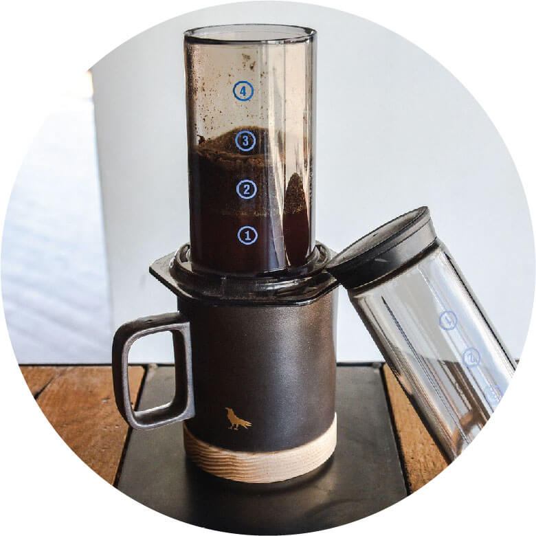 AeroPress coffee circled