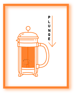 plunge french press