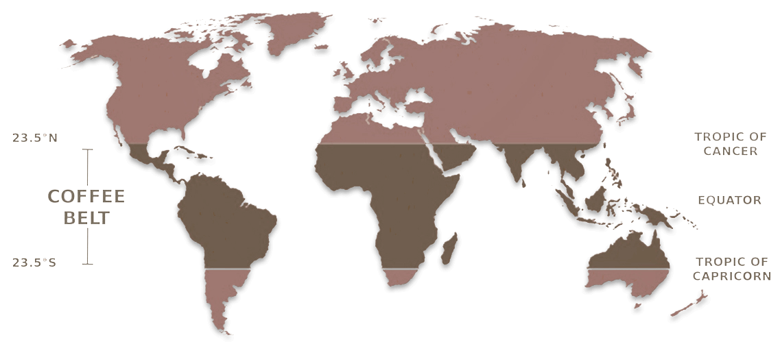 illustration of world coffee