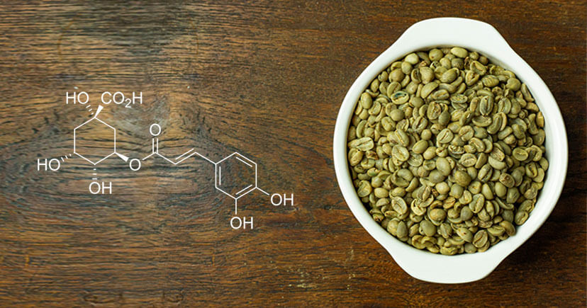 Green coffee beans in white bowl with Chlorogenic Acid formula