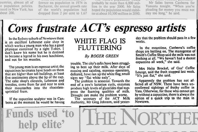 newspaper headline screenshot