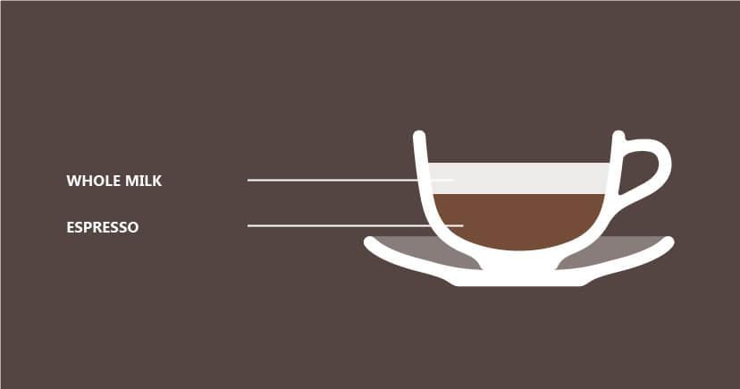 Caffe Antoccino illustration